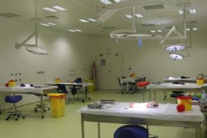 Bloc opératoire de chirurgie sur animaux